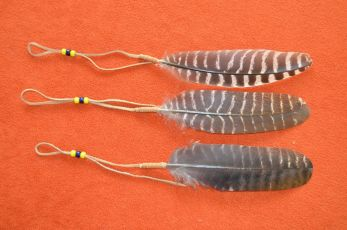 Coup Feathers