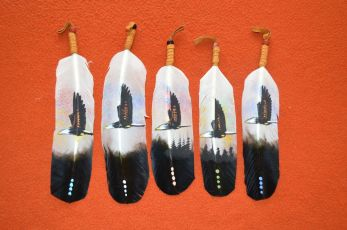 Hand Painted Eagle Feather Coup